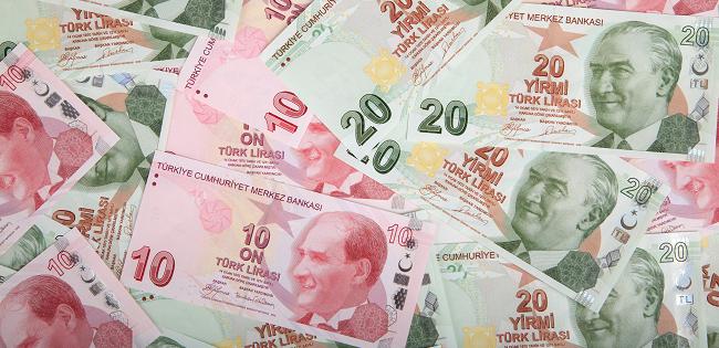 La Turchia e la crisi valutaria