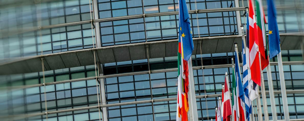 Piattaforme digitali e poteri pubblici europei