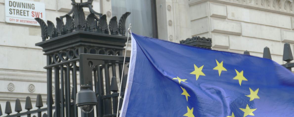 Cosa vuole diventare l'Unione Europea?