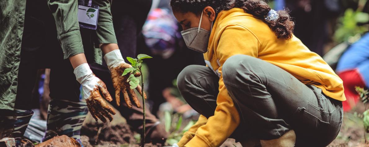 Finanza d'impatto e transizione ecologica: il primo bilancio di sostenibilità di Coopfond